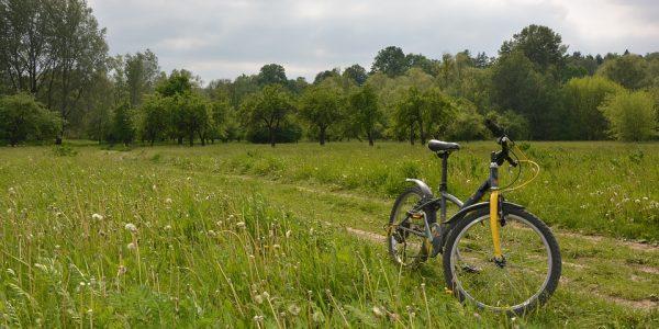 bici_campagna