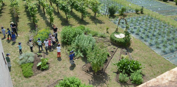 fattoria didattica 5