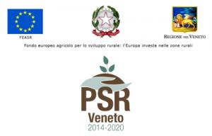 Banner_PSR_beneficiari